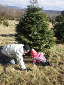 The hubs and M cutting down our tree last year.
